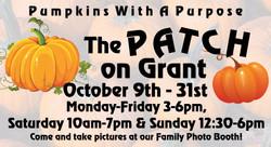 pumpkin patch 2-001