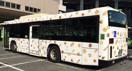 WEST_bus.jpg