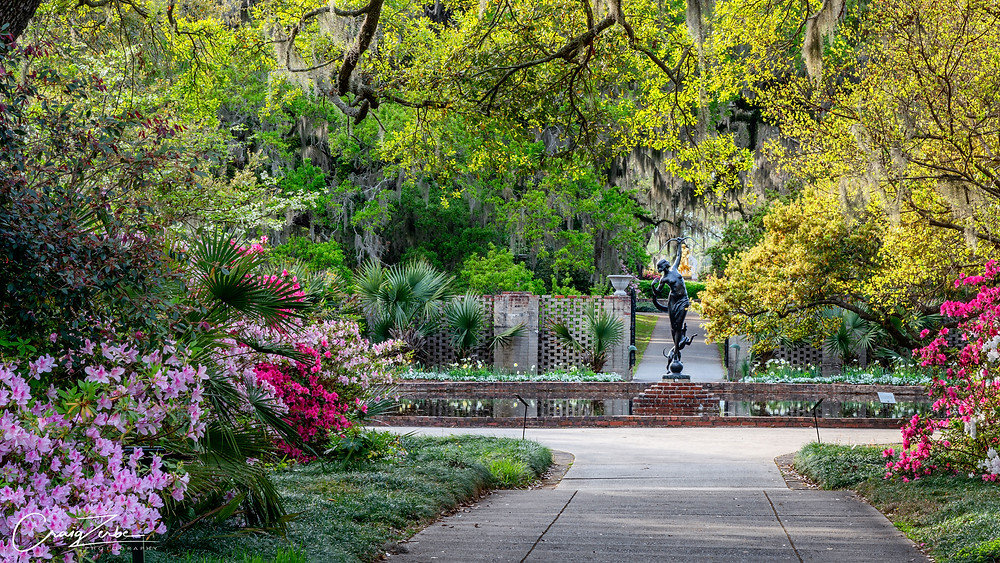 Brookgreen Gardens - Formal - South Carolina - Azalea - Photo Advice - Myrtle Beach