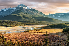 Icefields Parkway - Banff National Park