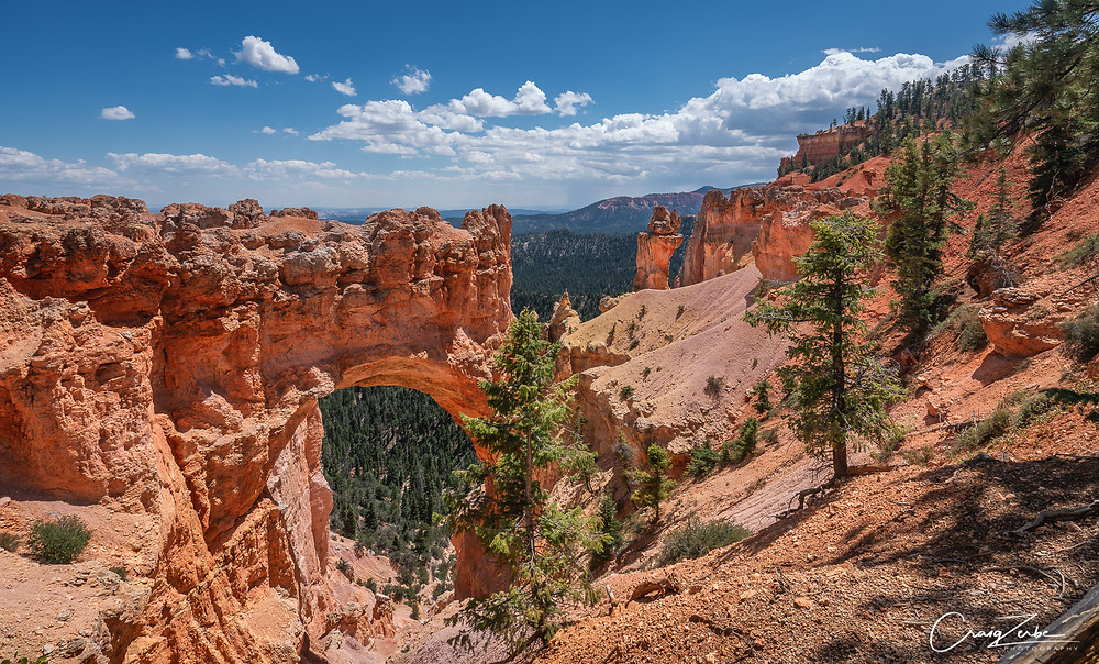 Natural Bridge - Bryce Canyon - Arches - Photo Guide