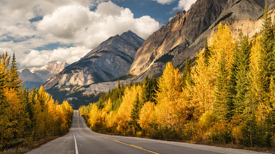 Icefields Parkway in Autumn, Banff National Park