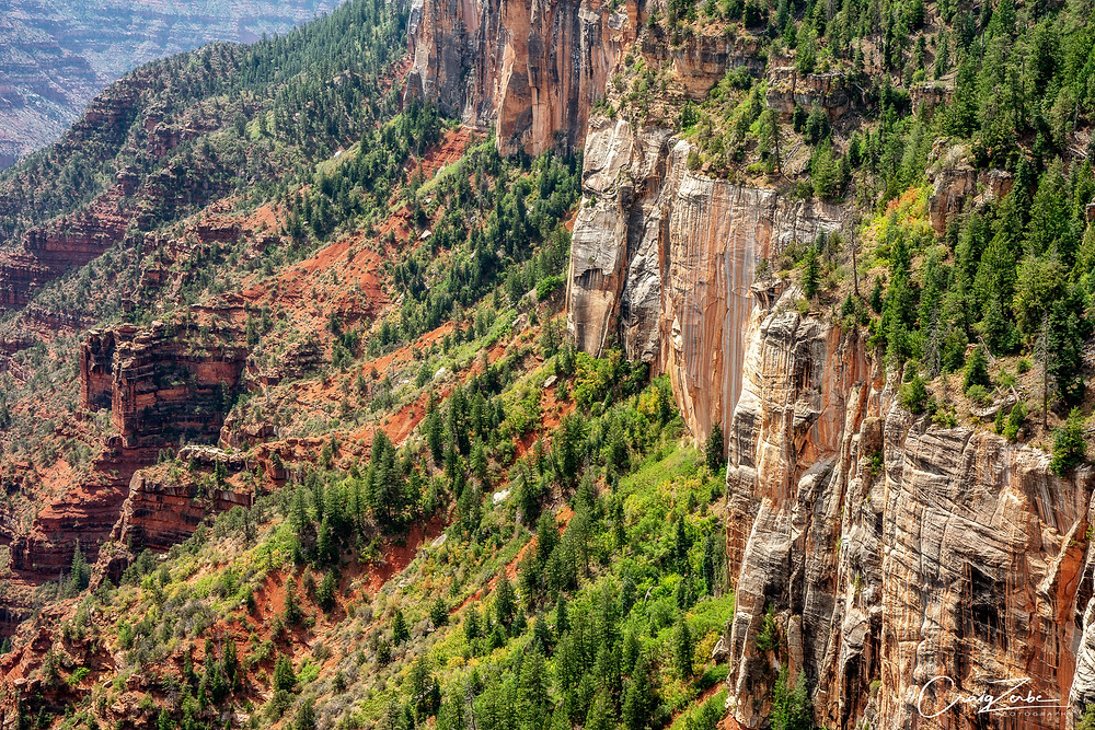 Coconino Overlook on the North Kaibab Trail - Grand Canyon - Photo Guide
