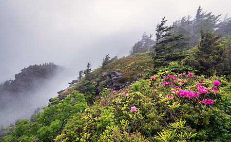 Grandfather Mountain, North Carolina