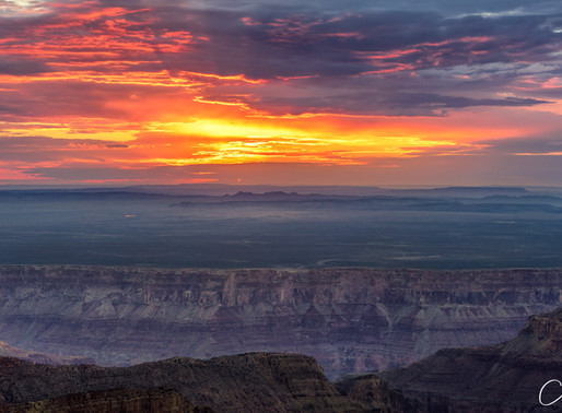 Grand Canyon - North Rim - Point Imperial - Vol.2