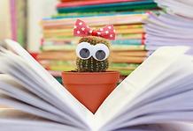 cactus livre ouvert