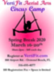 VertiFit Spring Break Circus Camp Flyer.