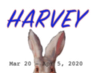 Harvey Slide 500x400.jpg
