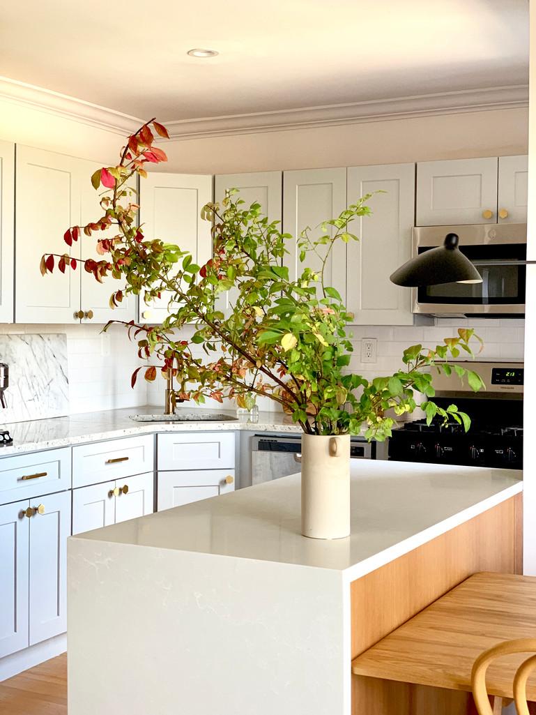 Brooklyn apartment kitchen remodel