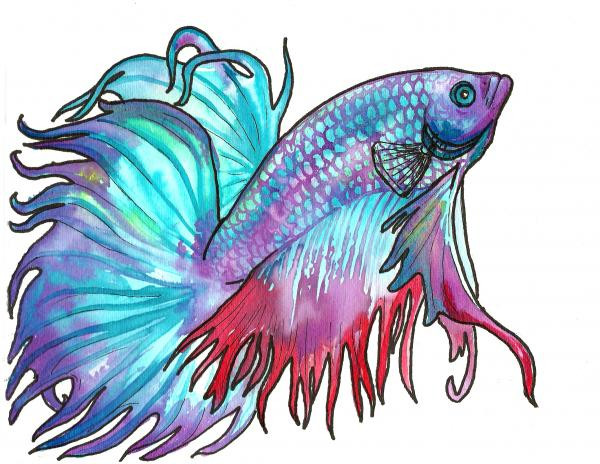 RIP Earl – Hard Water and The Story of Mike's Betta Fish, Ridgewood Moms