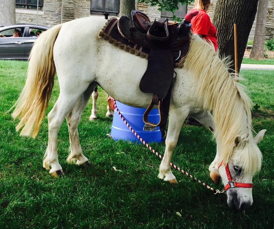Pony Rides at Montessori Learning Center Camp, Ridgewood