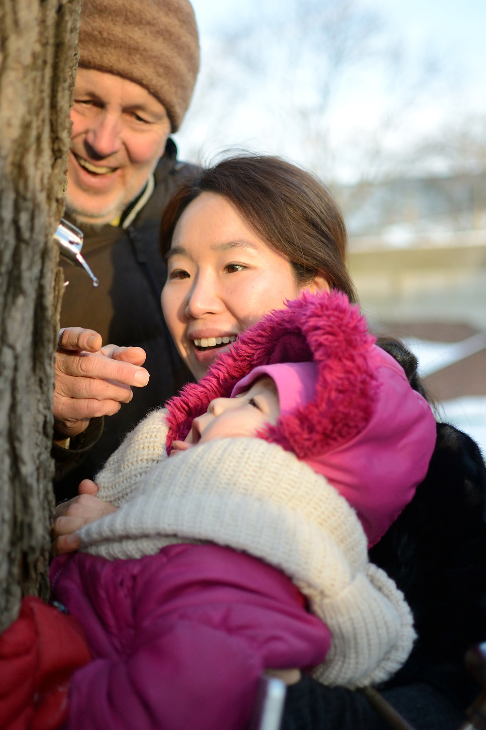 Maple Sugaring at The Nature Place - Free Event | March 3rd, Bergen County Moms