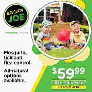 Mosquito Joe of Wayne, Bergen County Moms
