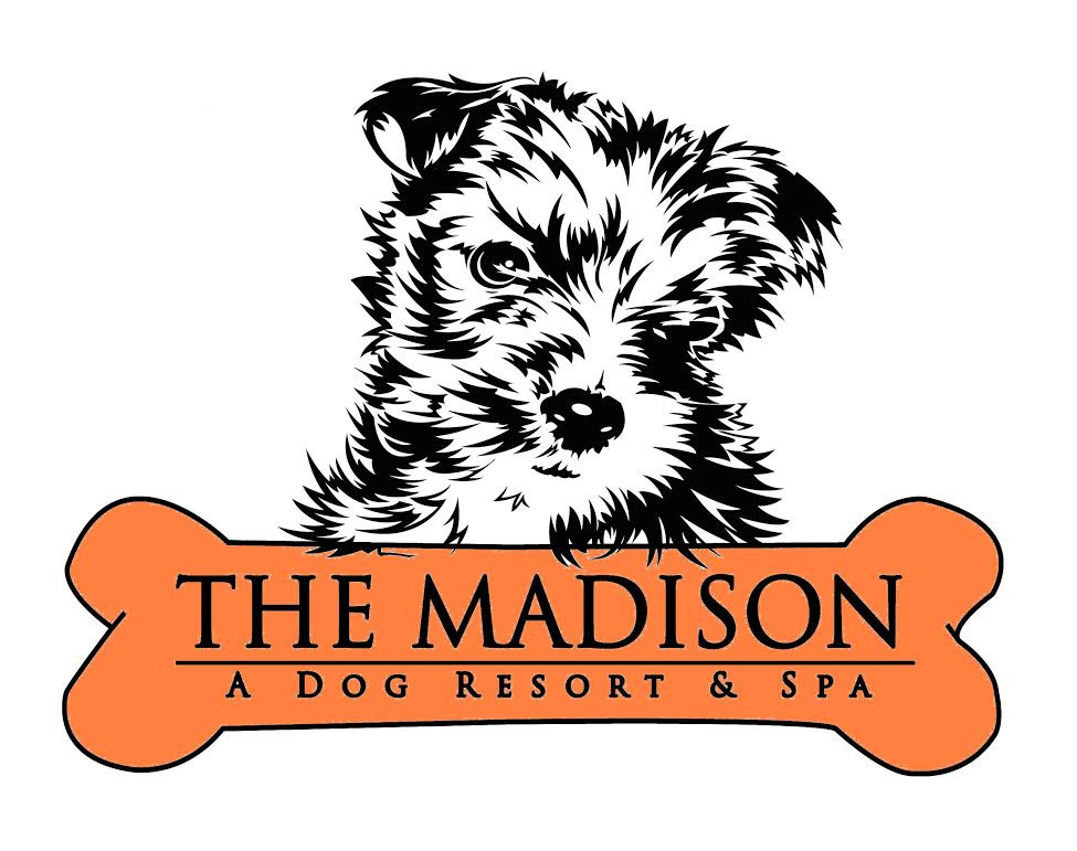 The Madison Dog Resort & Spa