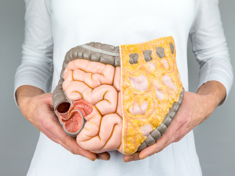 Want to Boost your Immunity this Fall? – Then Feed Your Gut! By Zarmeen Patil, M.S. Biochemistry + O