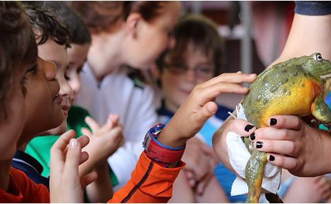 Outragehisss Pets at The Nature Place on March 24th | Free Event