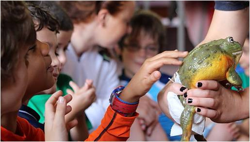 Outragehisss Pets at The Nature Place on March 24th, Bergen County Moms