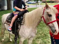 MLC Camp: Beach Week + Pony Rides