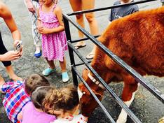 MLC Camp: Zoo and Animal Week + Petting Zoo