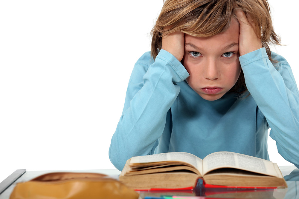 The Homework Wars by Fern Weis, Parent + Family Recovery Coach, Bergen County Moms
