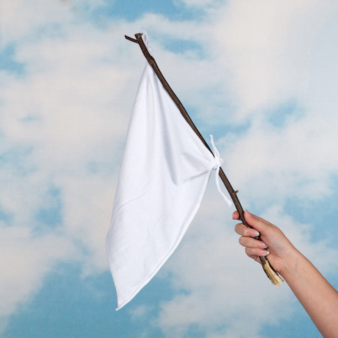 The White Flag by Noreen Heffernan