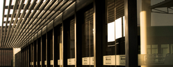 BANNER-HOME6.png