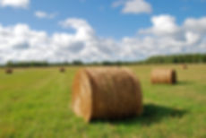 Naimul Karim Naim personal website photgraphy summer Minnesota nature hay bale Bemidji blue sky white cloud green field close-up
