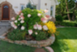 Naimul Karim Naim personal website photgraphy frontyard pink hydrandgea entrance stucco house flower garden