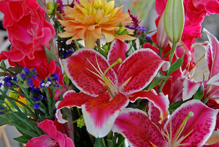 Naimul Karim Naim personal website photgraphy flower bouquet farmer's market