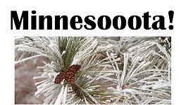 Naimul Karim Naim personal website photgraphy winter pine cone