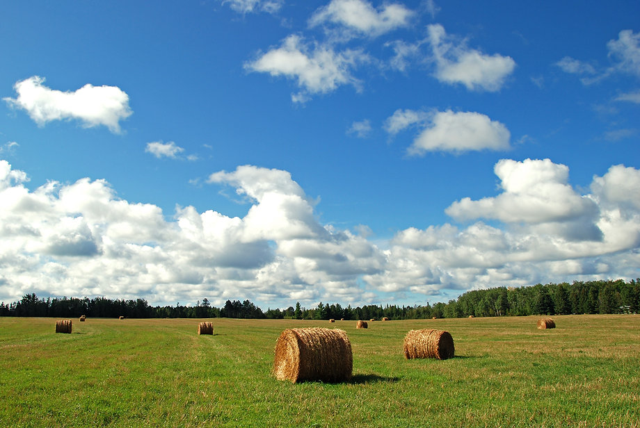 Naimul Karim Naim personal website photgraphy summer Minnesota nature hay bale Bemidji blue sky white cloud green field