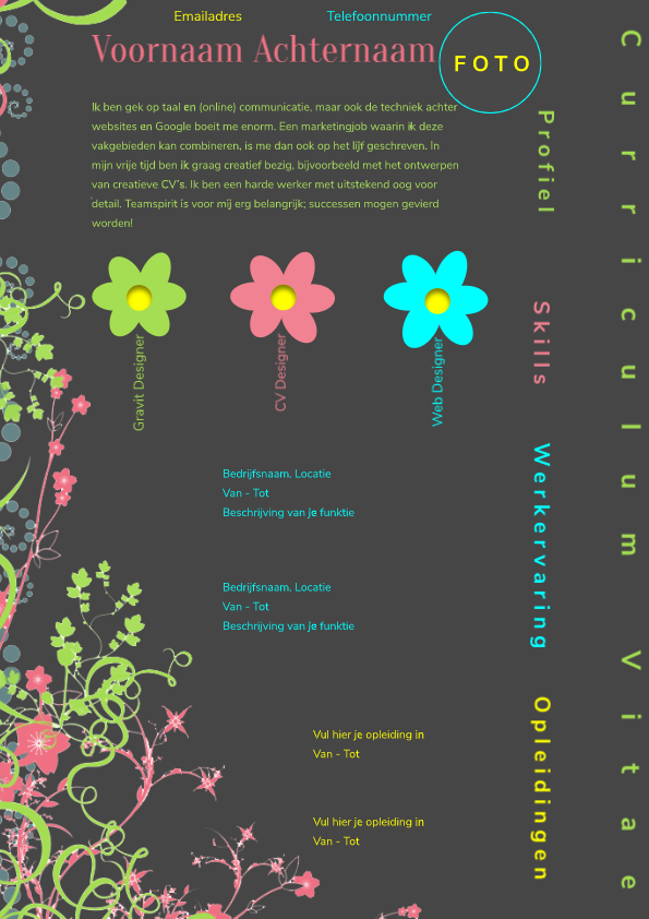 Colorful CV