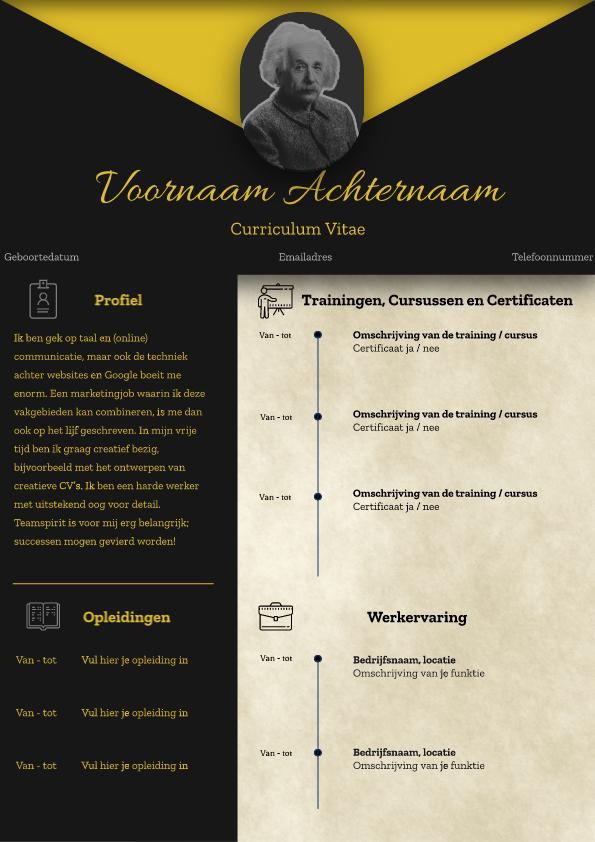 Zwart-Geel CV