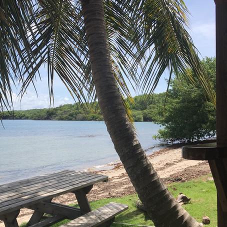 Grenadan ankkurointilahdet: Clarks court, Woburn, Hog Island, Egmont ja St. Davids