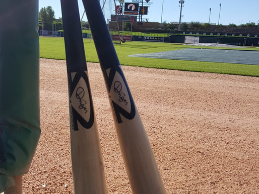 Swinging for the Fences in Southern Illinois