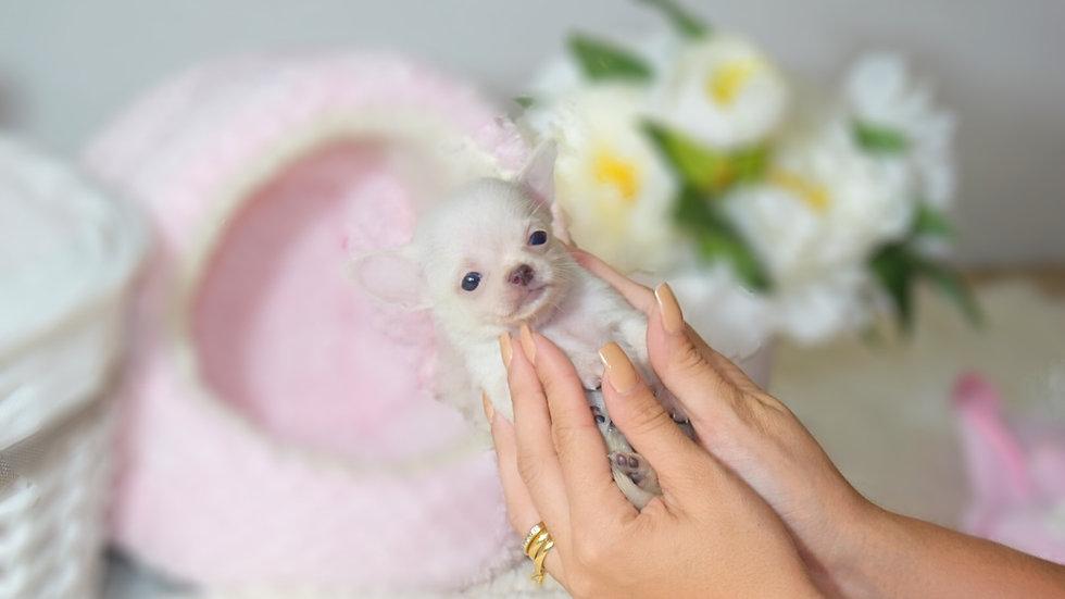 Baby Tita