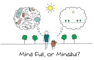 Being Mindful / Living in the Moment...experiments you can try!