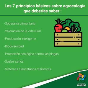 Los 7 principios básicos sobre agroecologia que deberías saber