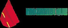 Logo_Mozambique (1).png