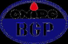 BGP.png
