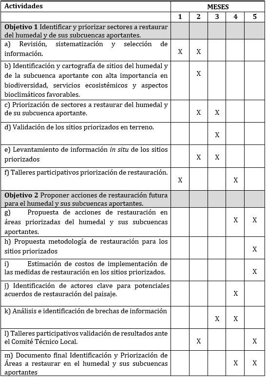 Plan de trabajo gef 13-10.jpg