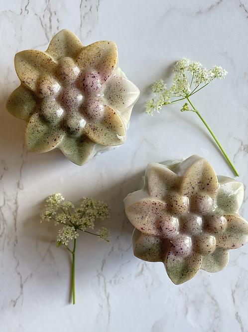 Pot de fleur • Fraicheur d'été ☀️