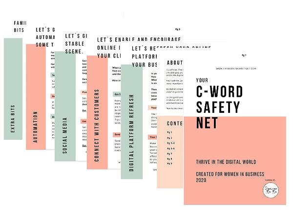 C WORD SAFETY NET PREVIEW .jpg