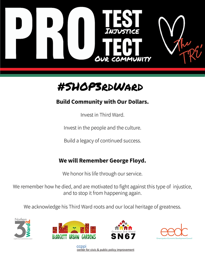 PROTECT PROTEST Campaign Flyer.png
