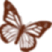 empoweringfamilies - butterfly.jpg