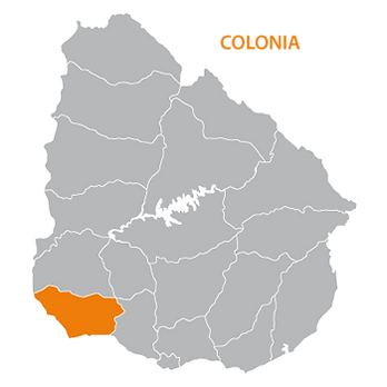 colonia.png