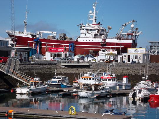 Reykjavikurhofn_minni 1.png