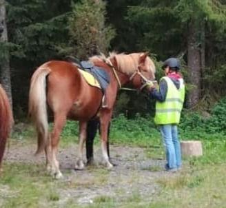 Ratsastustunnit, Riding Lessons