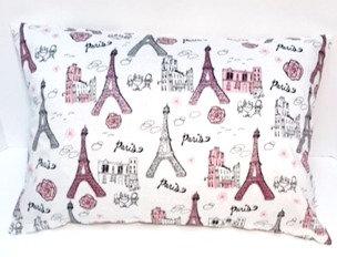Paris Pillow Cover and Pillow