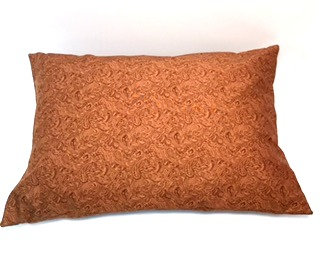Brown Paisley Recovery Pillow Case and Pillow